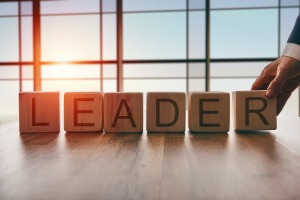 Executive, Leadership and Team coaching